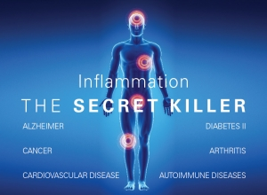 inflammation micronutrients