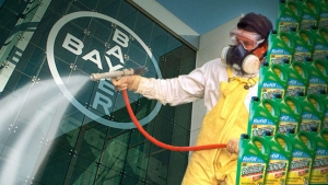 Beware of the bitten dog: How Bayer's desperate situation could lead to desperate acts  , Monsanto, Bayer
